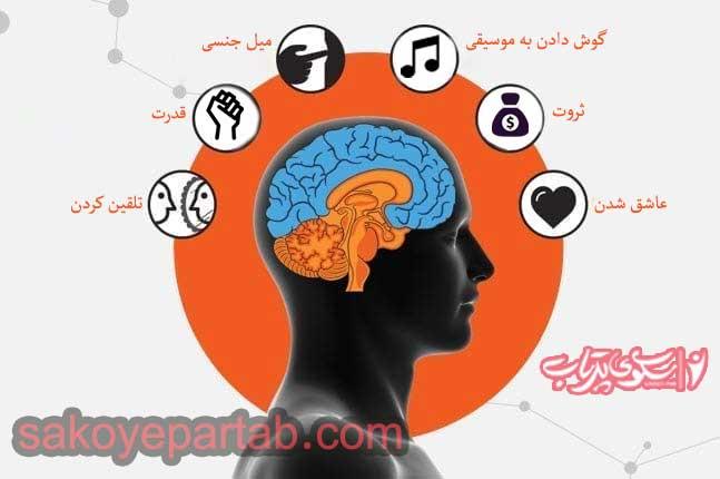 انواع محرک های ذهن